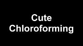 Cute Chloroforming