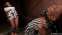 Ebony lesbian slaves Daisy Ducati and Nikki Dar...