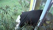 Die Nachbarin überrascht und gleich die geile S...