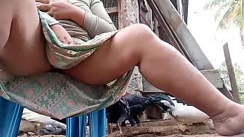 Thai aunty feeding chicken