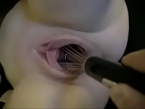 In pussy things 8 Weirdest