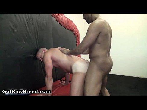 buster sly gay porno